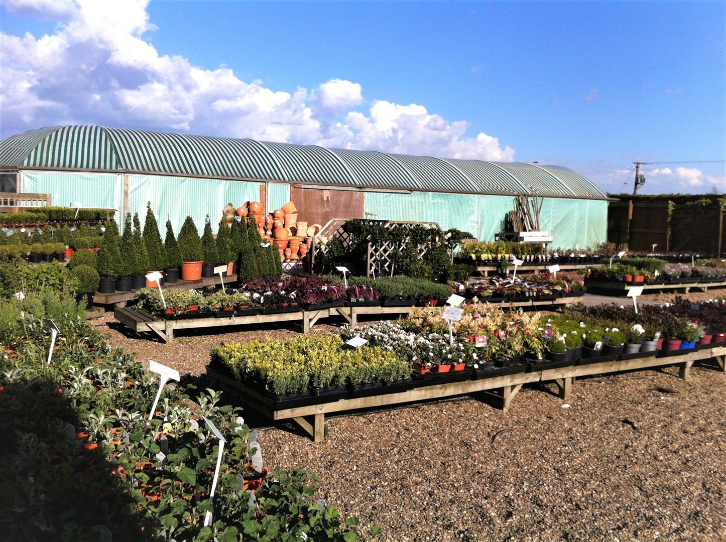 Middle Lane Nursery & Garden Centre, Middle Lane Nursery & Garden Centre, Preston, Hull, HU12 8TQ